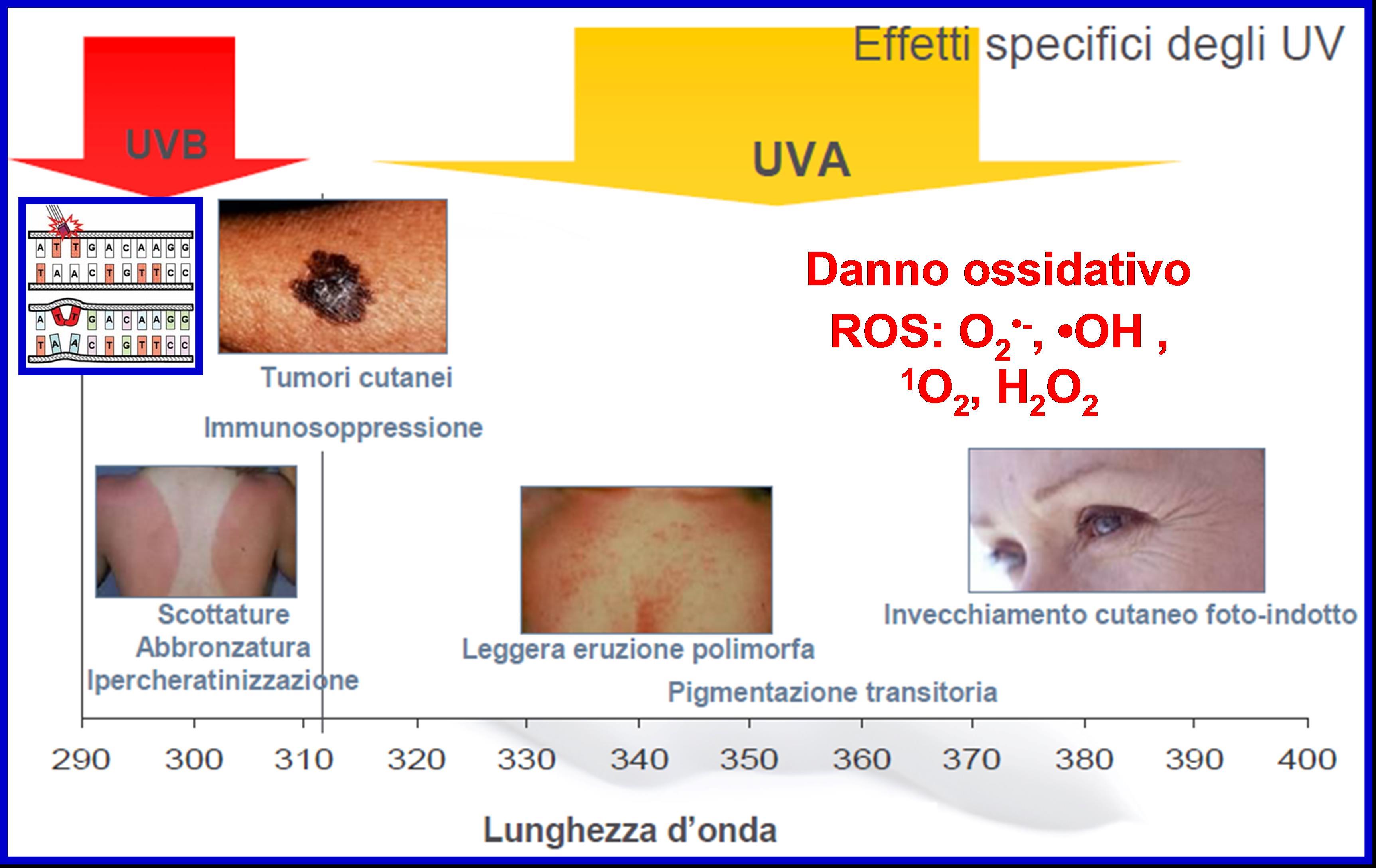 Effetti dei raggi UV sulla pelle