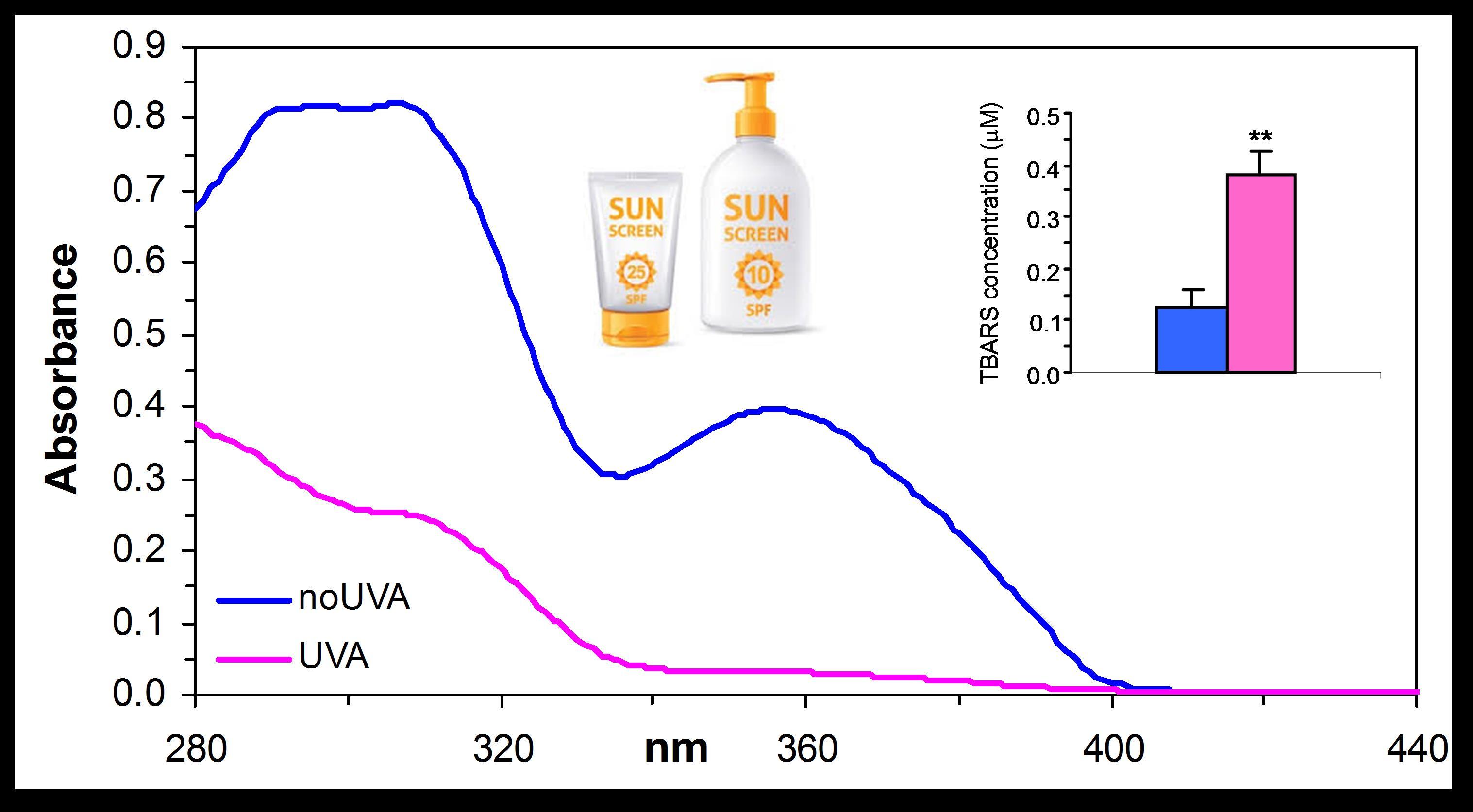 Spettri di assorbanza di crema solare prima e dopo   l'esposizione agli UVA