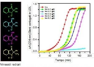 Attività antiossidante di molecole di sintesi