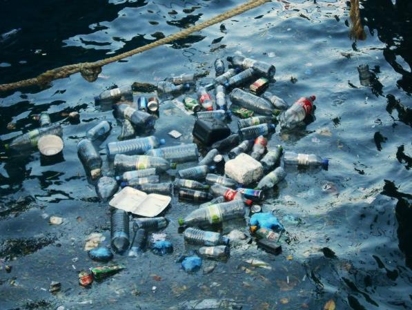 Bio-recupero di ambienti marini contaminati