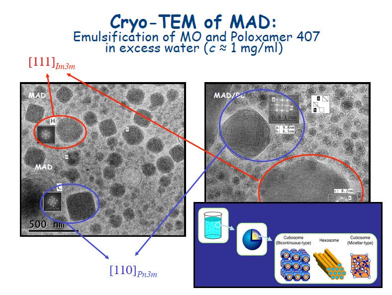 MAD, Monoolein Aqueous Dispersions: immagini al microscopio elettronico di nanoparticelle ottenute per dispersione di fasi cubiche di monooleina in acqua e utilizzate per veicolare farmaci. Gli spettri FFT (mostrati nelle riquadrature) confermano la presenza di cubosomi.