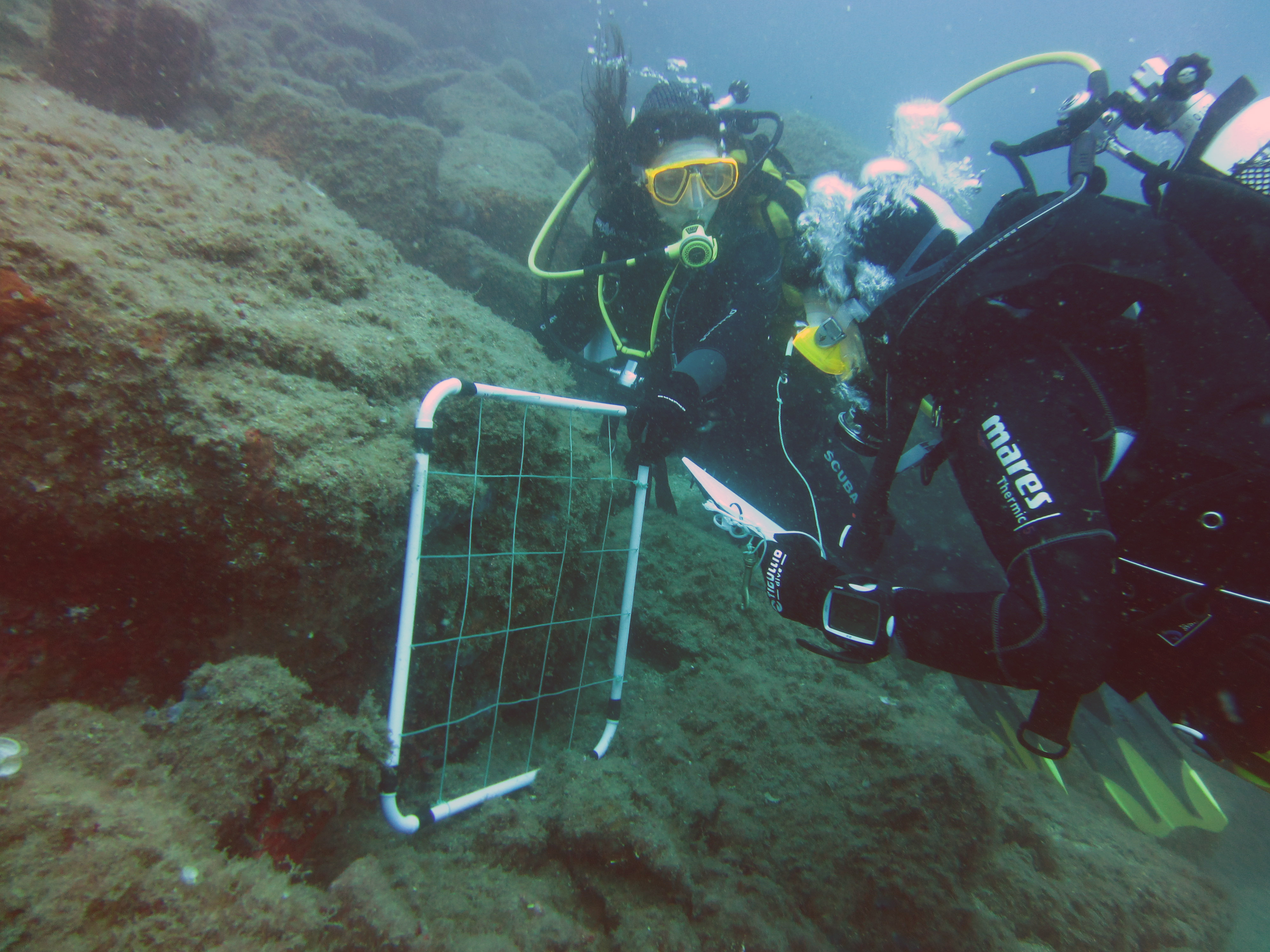 fotorilievo subacqueo